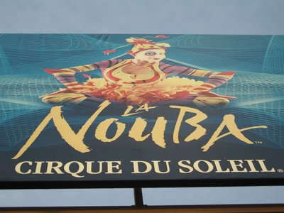 The La Nouba show by Cirque Du Soleil is a feast for the eyes and the ears.