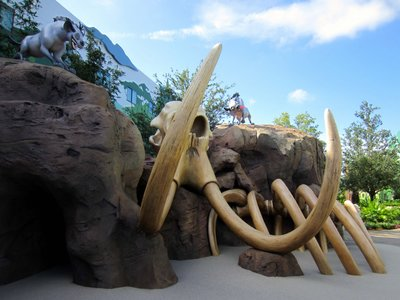 The play area features a soft floor covering and plenty of bones to climb.