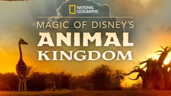 The Magic of Disney's Animal Kingdom is coming to Disney+ on September 25, 2020.  Photo credits (C) Disney Enterprises, Inc. All Rights Reserved