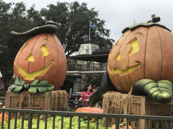 These huge Jack-O-Lanterns welcome you to the Magic Kingdom.