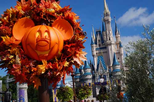 These Mickey pumpkin wreaths are on every light pole on Main Street!