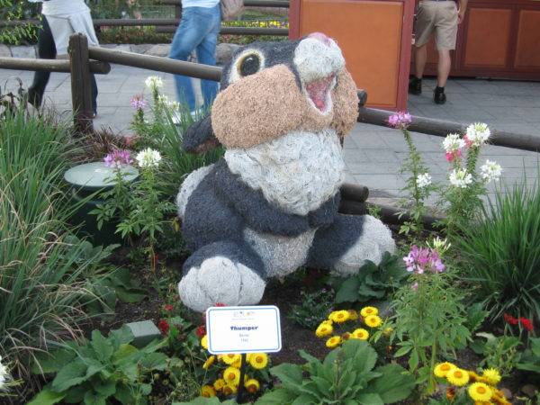 Thumper hardly ever does meet and greets in Disney World!