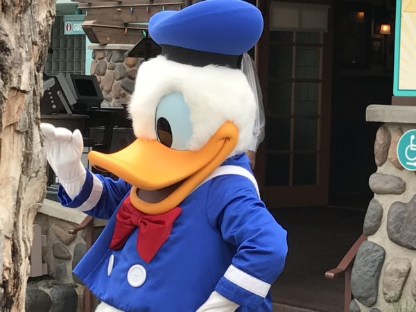 Meet Donald Duck in Dinoland USA!