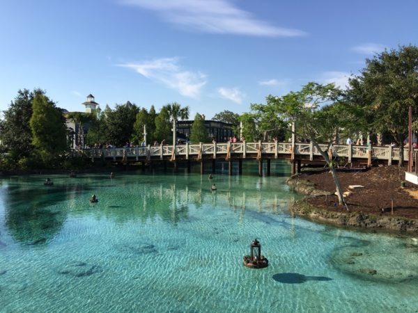 If you haven't been to Disney Springs for a while, be sure to check it out. A lot has changed in the last few years!