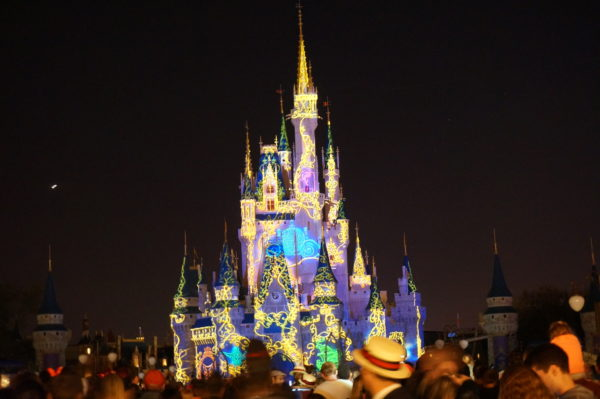 If you think Cinderella Castle is pretty during the day, you should see it at night!