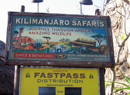 Kilimanjaro Safaris is different every time and is one of the most popular attractions in Animal Kingdom.