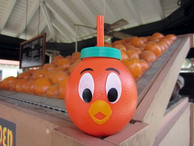 Orange Bird Sipper