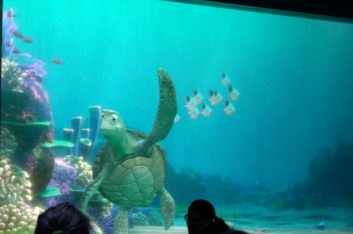 Turtle Talk - awesome!