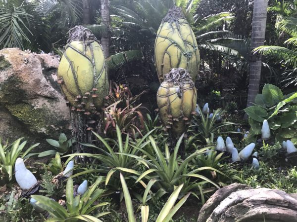 "Flower pods are a recognizable part of the Pandora landscape. These plants are called ""Vein Pods."" They detoxify the air on Pandora."