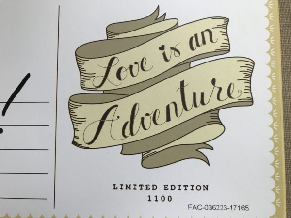 Love is and Adventure Limited Edition Pin pack.