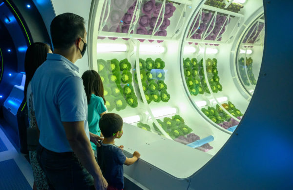 """Check out the """"grow zone"""" where you can see food begin grown on the space station. Photo credits (C) Disney Enterprises, Inc. All Rights Reserved"""