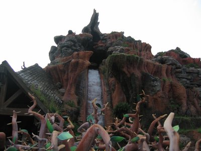 The drop into the briar patch is part of the fun at Splash Mountain.