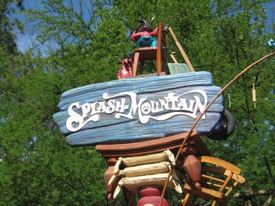 Splash Mountain is a highly themed log flume ride in Frontierland.