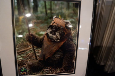 Fun Ewok photo for sale.