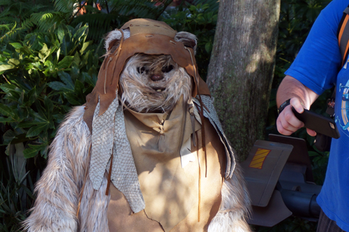 Aren't Ewoks cute?