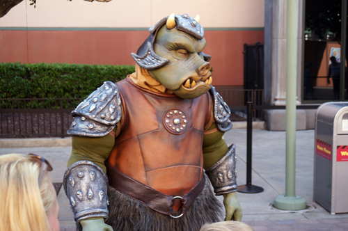 Check out this Gamorrean.
