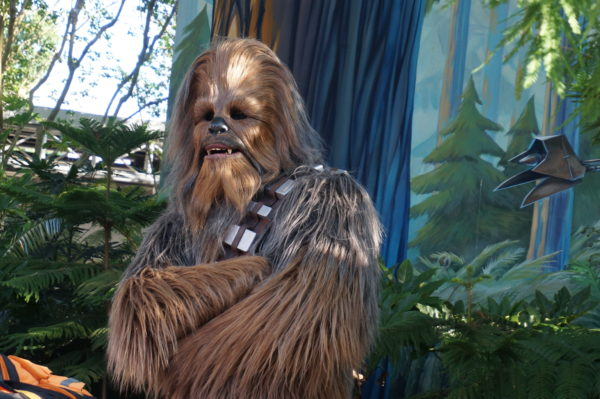 Imagine seeing Chewie hanging out at your hotel!