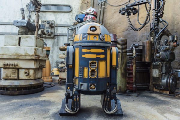 Though not THE R2-D2, this is what an R2 unit looks like. Photo credits (C) Disney Enterprises, Inc. All Rights Reserved