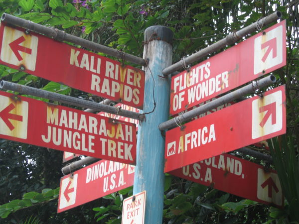 You'll soon be able to see the tiger cubs in the Maharajah Jungle Trek!
