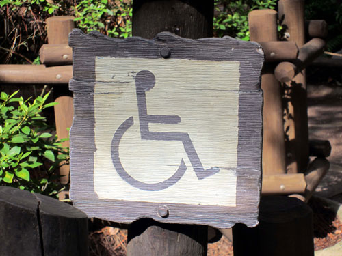 Disney can be a great place for wheelchairs and ECVs.