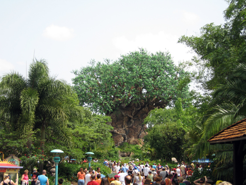 """The """"turn left strategy"""" works in all of the parks and allows you to avoid the crowds."""