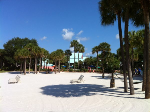 Trees provide shade and shelter in Disney World.