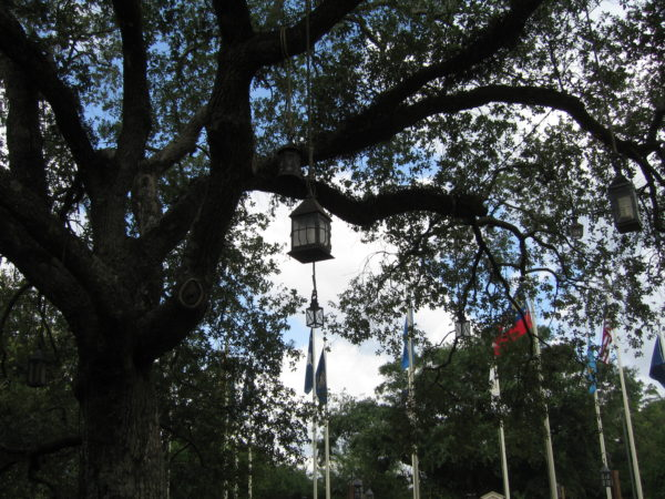 The Liberty Tree plays a significant part in the history of America, and it's only proper that is hold a prominent spot in Liberty Square, which is themed as Colonial America.