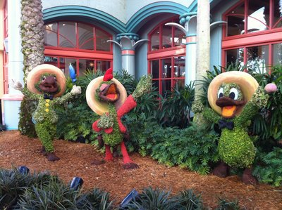 Walt Disney World Resort Information