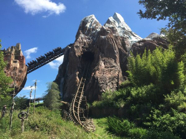 Since Expedition Everest goes backwards, some guests feel nauseous after riding.