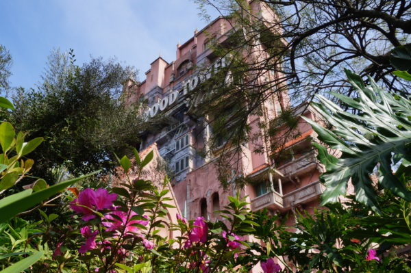 Tower of Terror is the tallest building in Disney world at 257 feet high!