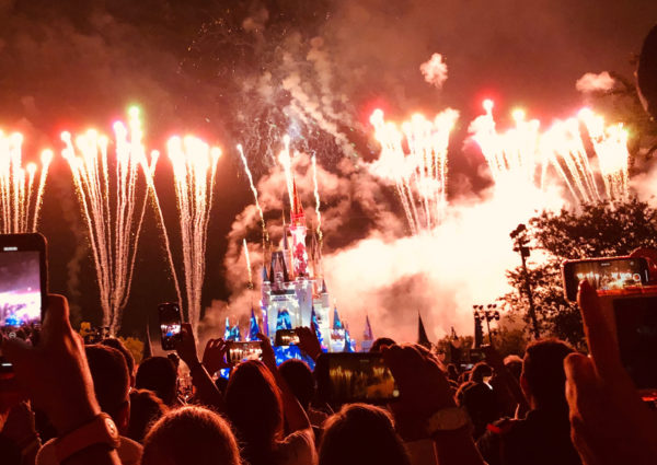 Crowd control difficulties and financial challenges have caused Disney to cancel shows across the resort.