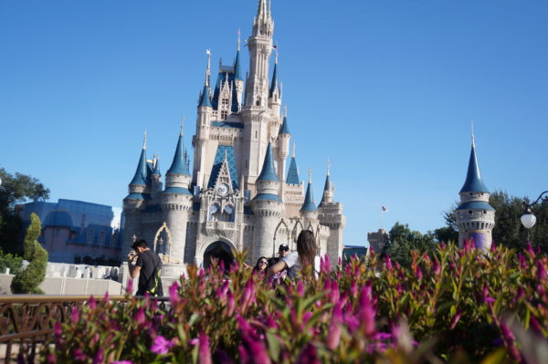 Win a stay in the Cinderella Castle Suite and help out Centra Floridian at-risk youth at the same time!