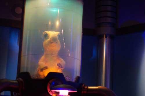 Top Six Memories From ExtraTERRORestrial Alien Encounter